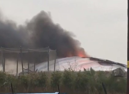 Chester Zoo fire: staff rush towards blaze to save animals